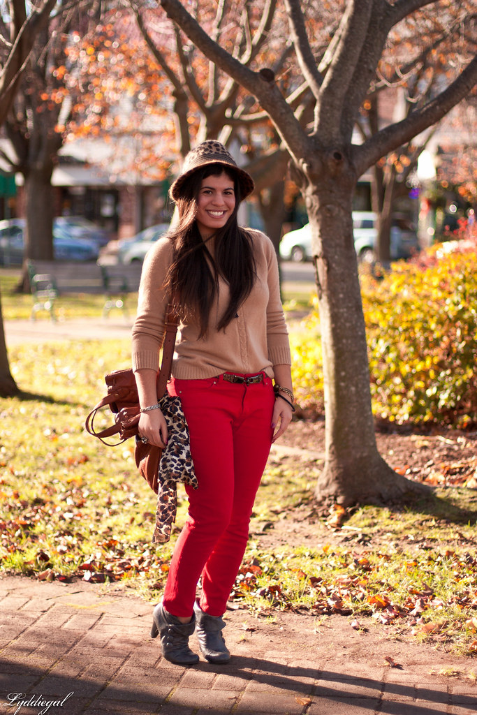 leopard and red (again)