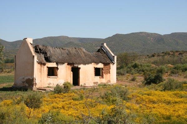 Karoo landscape 1