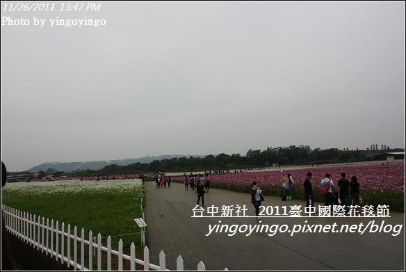 2011臺中國際花毯節20111126_I2134