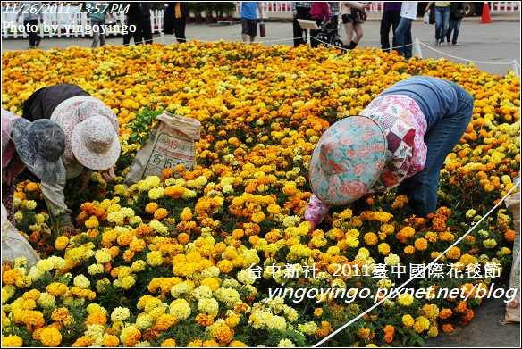 2011臺中國際花毯節20111126_I2148