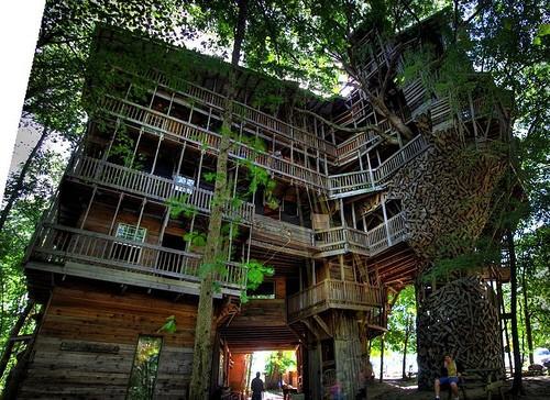 treehouse_008