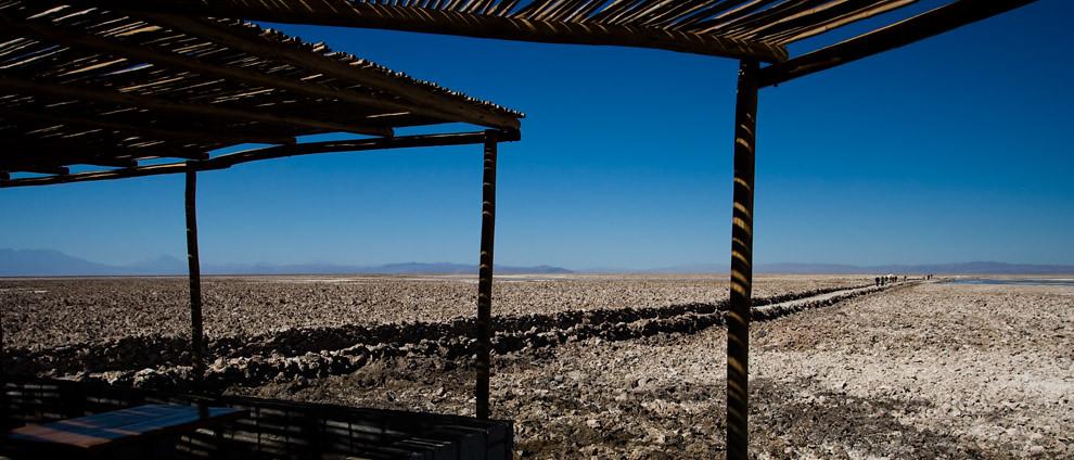 Visitantes se pierden en el horizonte del Salar húmedo del norte chileno. (Guillermo Morales)