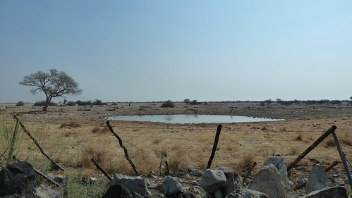 Etosha campsite
