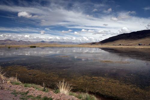 perù provincia paesaggi puno juliaca