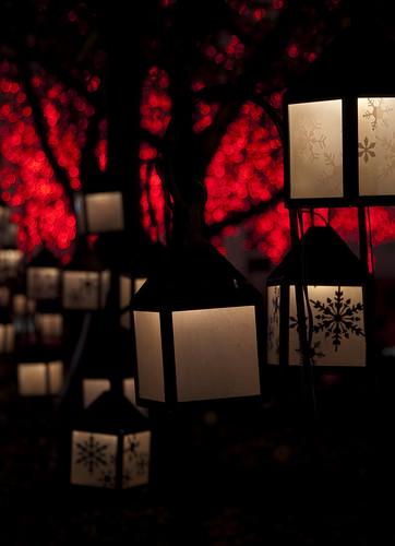 christmas red silhouette lights utah bokeh saltlakecity templesquare nikond90