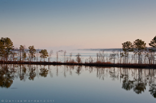 morning trees winter lake nature fog sunrise canon landscape nc december jordanlake marthaschapel 450d imaginefotocom