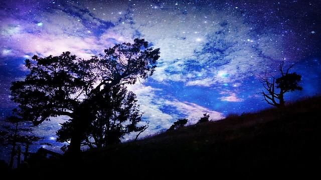 starry sky wallpaper flickr photo sharing