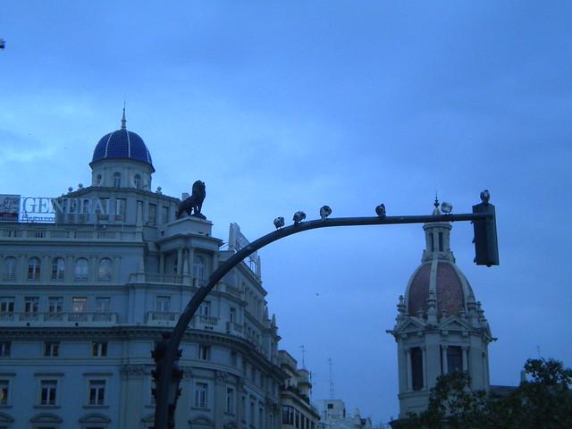 Valencia, palomas y leones