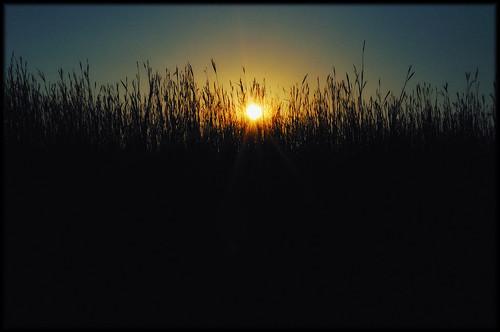 blue autumn sunset sky sun black fall yellow wisconsin dark outdoors nikon october d90 davidtomaloff richardbong