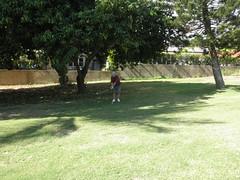 Hawaii Kai Golf Course 165
