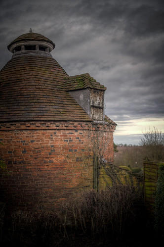 976/1000 - Dovecot by Mark Carline