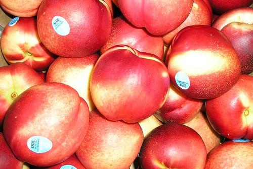 甜桃-澳洲甜桃