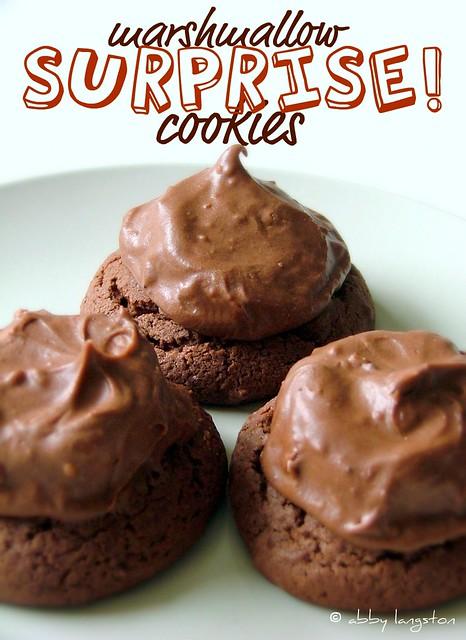 Marshmallow Surprise! Cookies