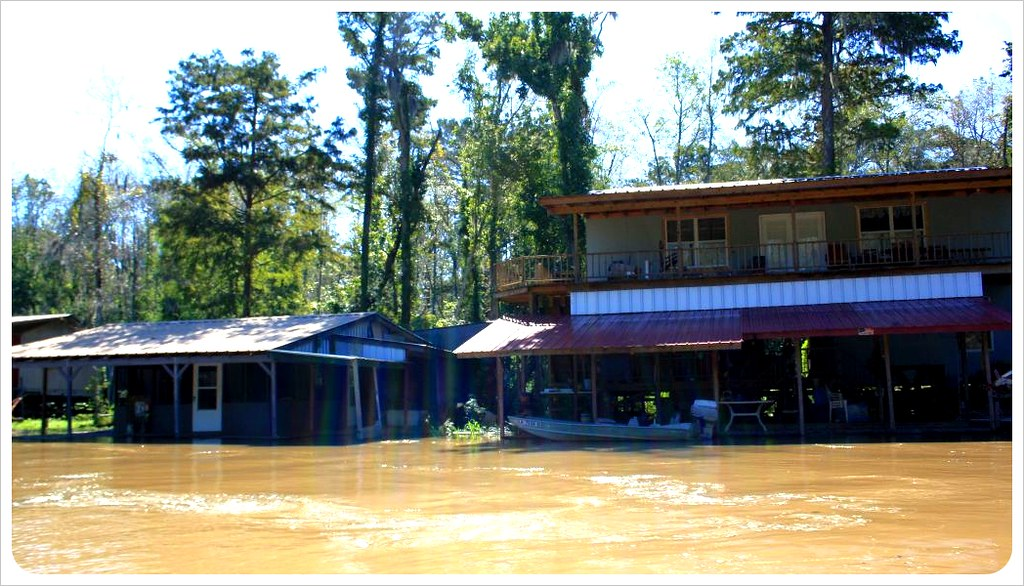 houses in the swamps of louisiana