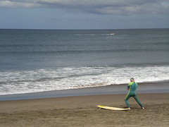 New Zealand Tour Surf