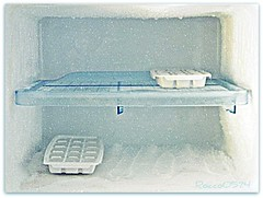 AFD-P52-S2 - El Frio: Freezer