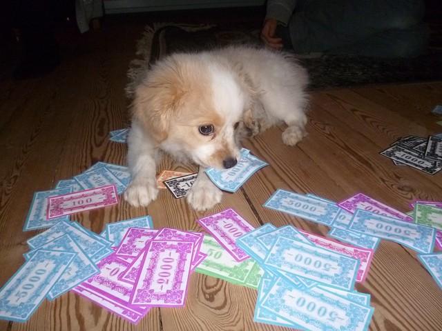 Dog Eat Dog Uncensored