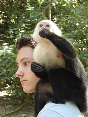 Monkey on a guy's shoulder