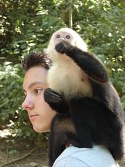 Monkey on a guy's shoulder