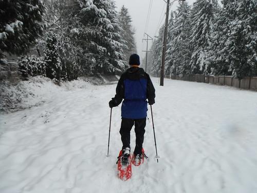 Dad Snowshoeing
