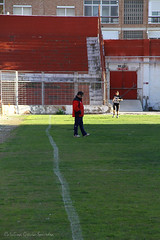 Murcia Cobras-Sevilla Linces.LNFA.