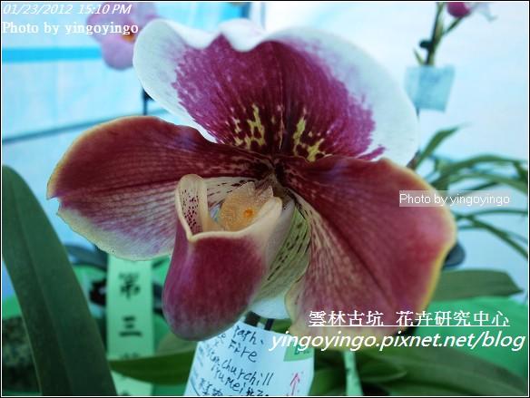 雲林古坑_花卉研究中心20120123_R0050677