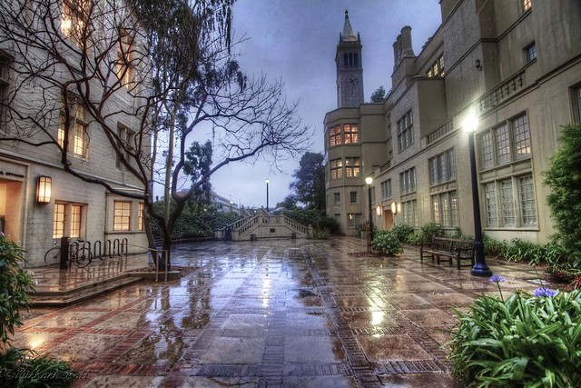 Wet Day at Cal