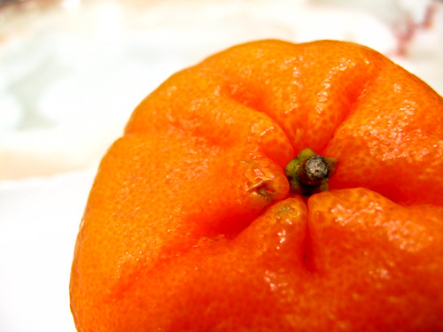 IMG_1671 Mandarin orange
