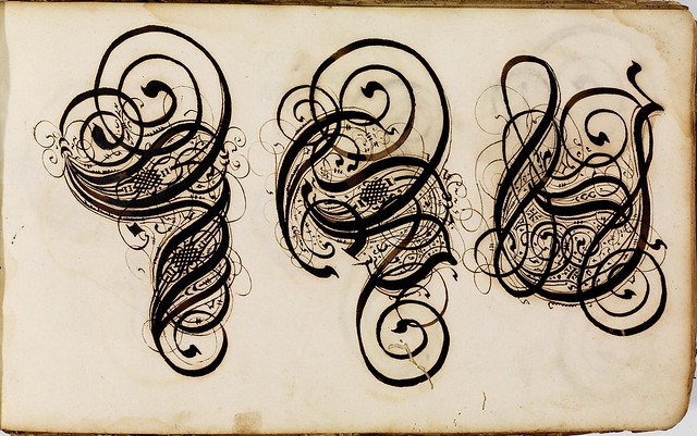 Kalligraphische Schriftvorlagen by Johann Hering g
