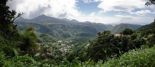 panorama nature forest rainforest paradise unesco dominique unescoworldheritage dominica caribbeansea lesserantilles commonwealthofdominica natureislandofthecaribbean
