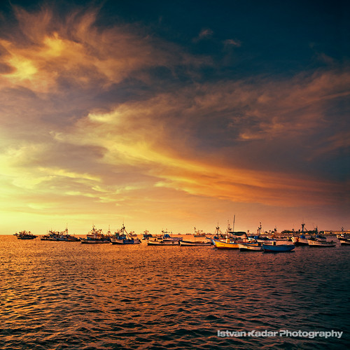 ocean sunset seascape bird beach peru landscape boat dock sundown harbour scenic ica paracas anchored provinceofpisco