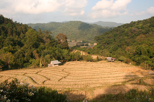 Thailand countryside