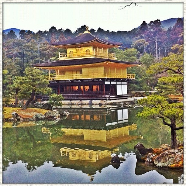 #金閣寺 Golden Pavilion of #Kyoto #京都