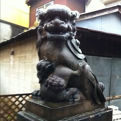 狛犬探訪 馬込 瑞穂幼稚園の神明社 阿形は子連れだが