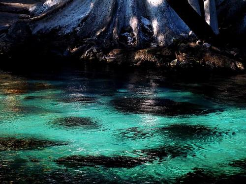 Ojo de Agua a desde otra perspectiva by LuchoVaS