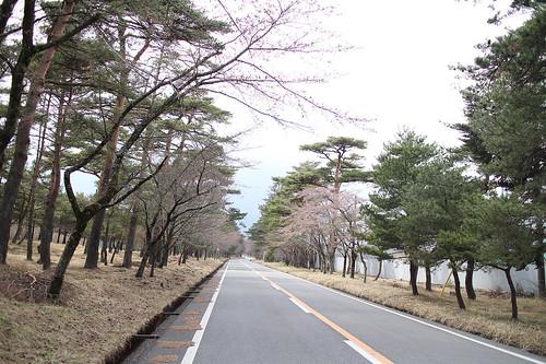 xlrider-cycling-japan-149
