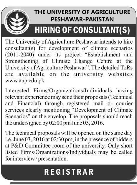 University of Agriculture Peshawar Consultant Required