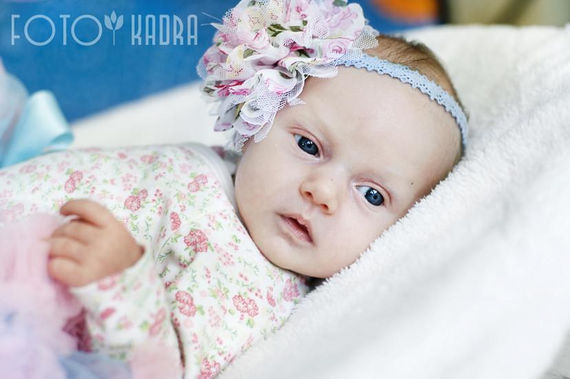 zdjęcia noworodków Toruń