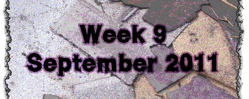 Week 9 September 2011
