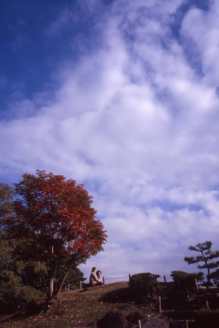 丘の上の青空