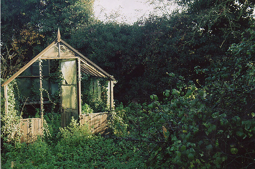 Greenhouse dreamhouse