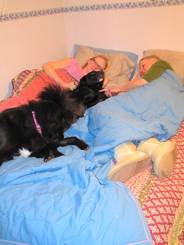 dogs and mom in the bed