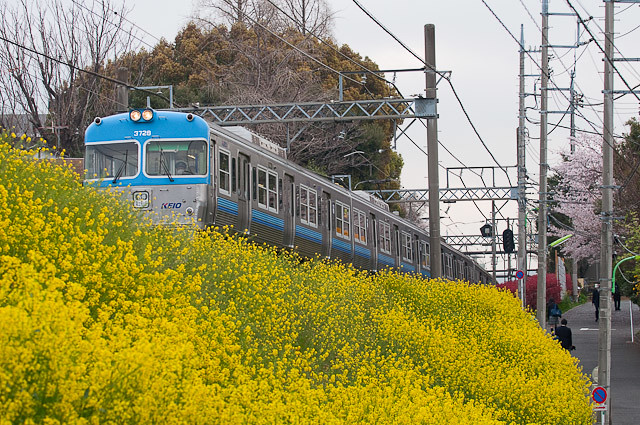京王電鉄井の頭線3000系 3028F 0411