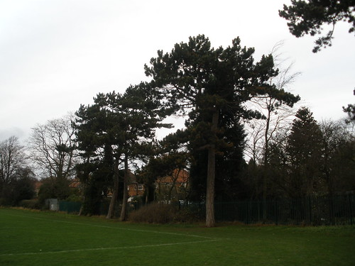 Spring Lane Playing Fields