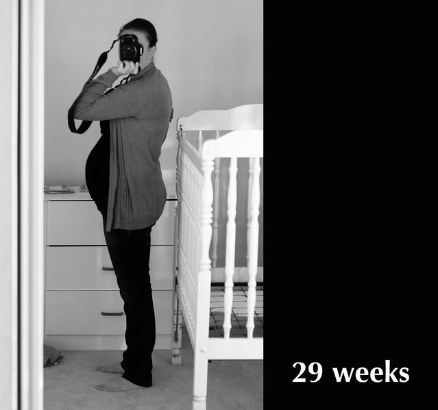 29weeks2