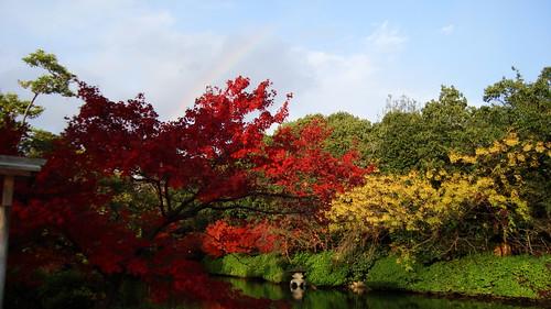 2011/12 神泉苑