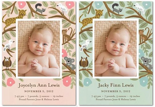 Pretty Birth Announcements