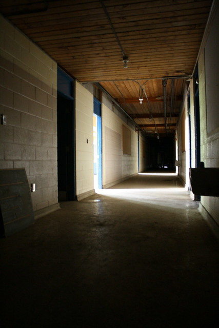 Woodview Public School Corridor