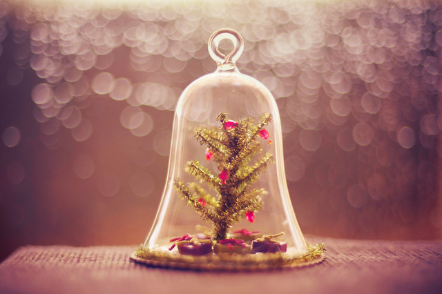 What's the world for you if you can't make it up the way you want it - Beautiful Bokeh Photography