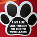 Small photo of Car Magnet